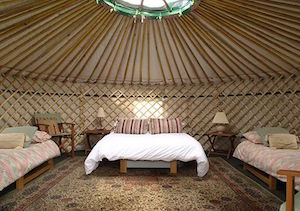 Yurt Interior St Davids Peninsula Cottages